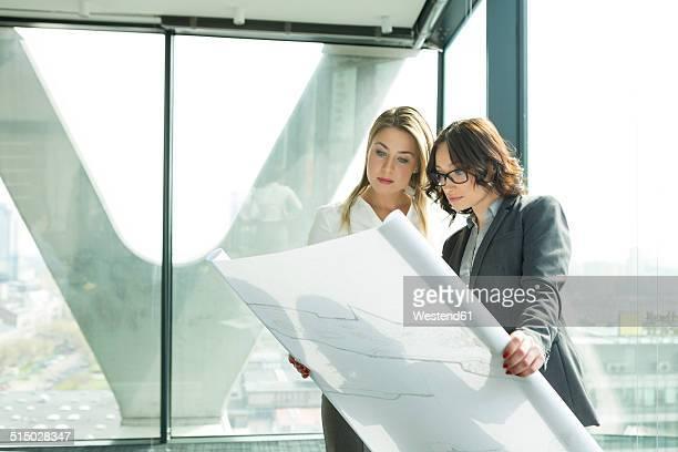 two businesswomen in office looking at blueprint - 商業不動産 ストックフォトと画像