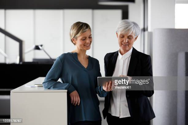 two businesswomen sharing tablet in office - german short haired pointer stock pictures, royalty-free photos & images