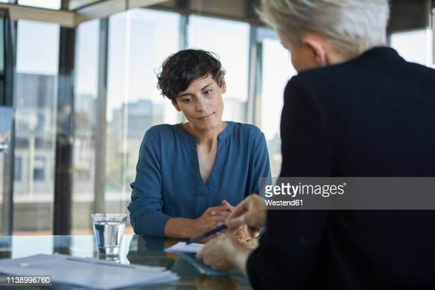two businesswomen talking at desk in office - german short haired pointer stock pictures, royalty-free photos & images