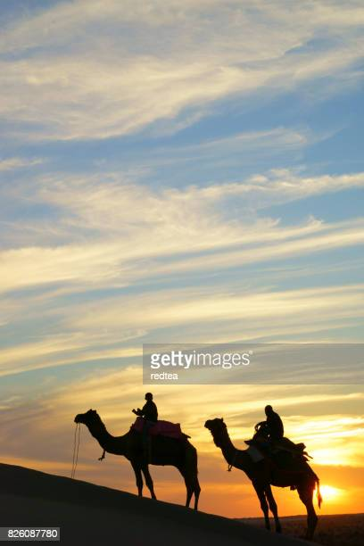 two cameleers camel drivers with camels in dunes of thar - wonderlust stock pictures, royalty-free photos & images