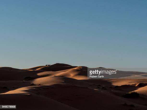two camels over a dune in the sahara desert - merzouga stock pictures, royalty-free photos & images