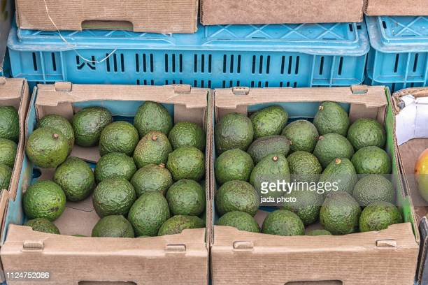 two cardboard boxes filled with avocados