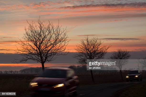 Two cars on country road with back lit trees under romantic sky