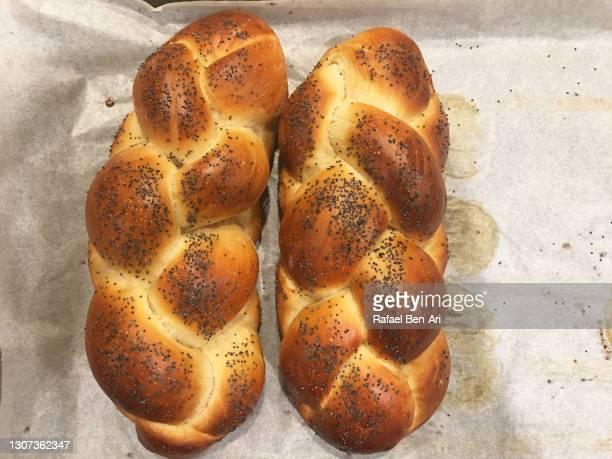 two challah bread on a baking tray for sabbath jewish holiday - rafael ben ari 個照片及圖片檔