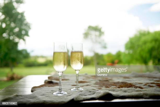 two champagne flute - dos objetos stock pictures, royalty-free photos & images