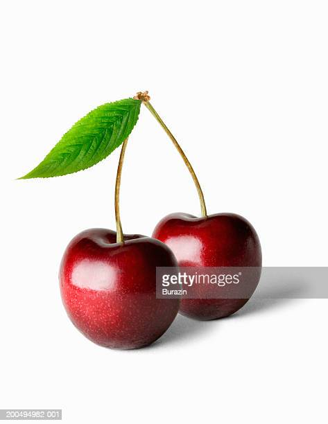 Two cherries and stalk, against white background, close-up