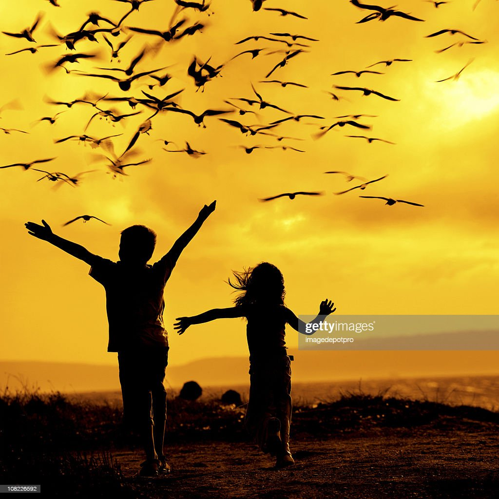 Zwei Kinder verfolgen Möwen : Stock-Foto