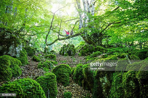 dos niños disfrutando del bosque - comunidad foral de navarra fotografías e imágenes de stock