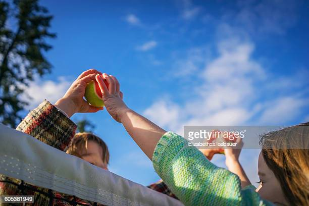 Two children passing tennis balls over the top of the net