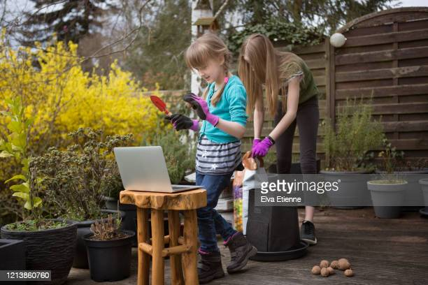 two children planting in a back yard in spring whilst communicating with grandmother via laptop video call - baden württemberg stock pictures, royalty-free photos & images