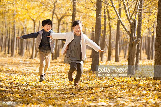 Two children playing in autumn woods