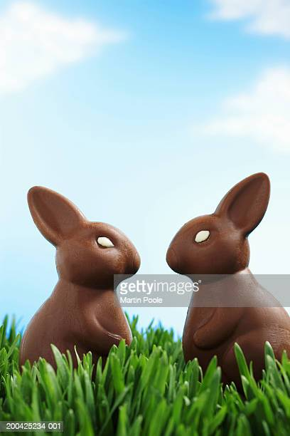 Two chocolate Easter bunnies facing each other in grass, side view