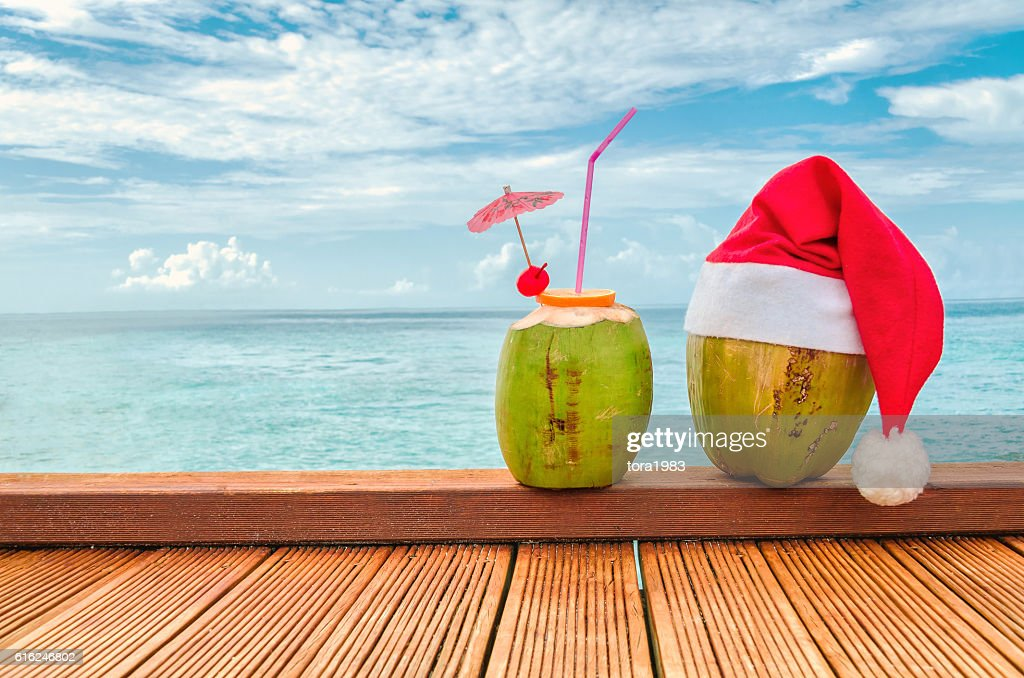 Two coconut : Stock Photo