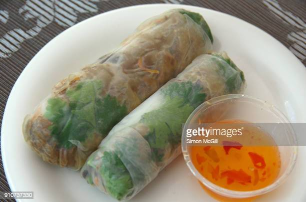 Two cold beef rice paper rolls and sweet chili dipping sauce on a white plate set on a floral patterned tablecloth