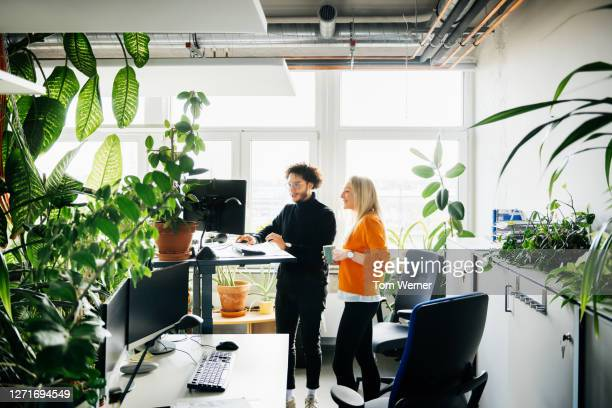 two colleagues looking at work using standing desk - business stock pictures, royalty-free photos & images