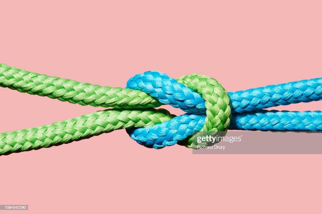 Two coloured ropes knotted together : Stock Photo