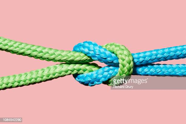 two coloured ropes knotted together - zusammenhalt stock-fotos und bilder