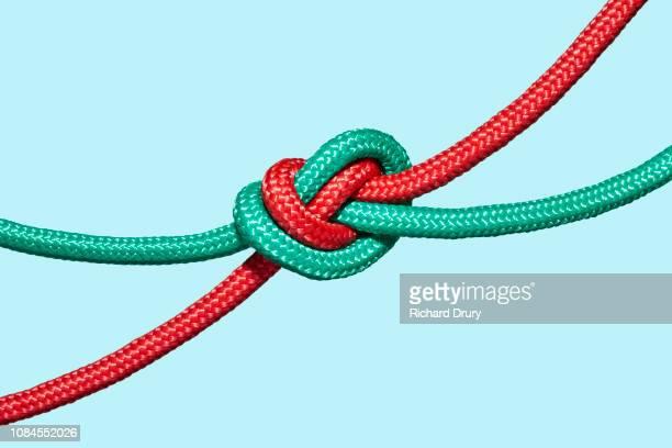 two coloured ropes knotted together - legame affettivo foto e immagini stock