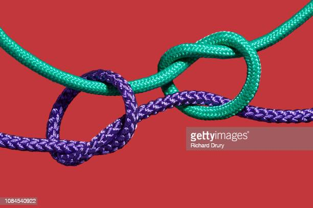 two coloured ropes knotting together - tied knot stock pictures, royalty-free photos & images