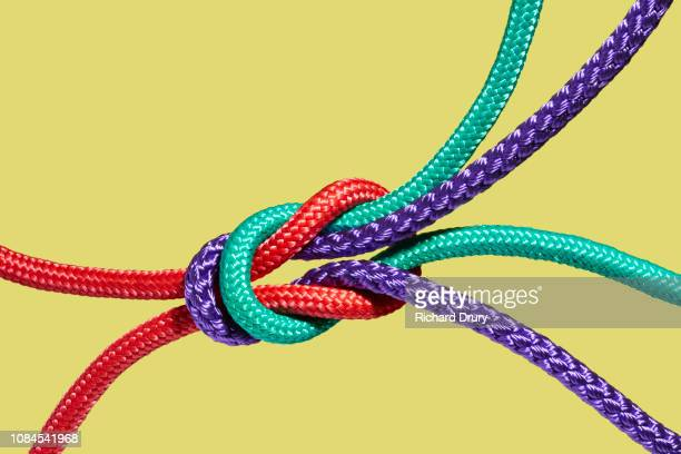 two coloured ropes knotting together - three objects stock pictures, royalty-free photos & images