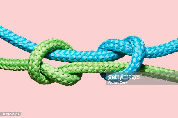 two coloured ropes knotting together - 支える ストックフォトと画像