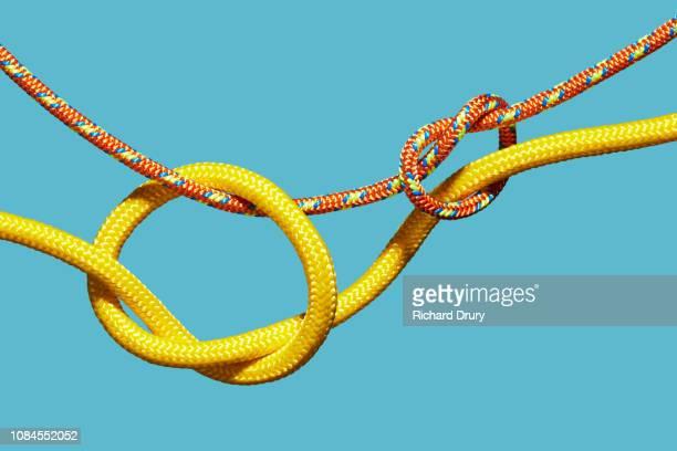 two coloured ropes knotting together - entrelazado fotografías e imágenes de stock
