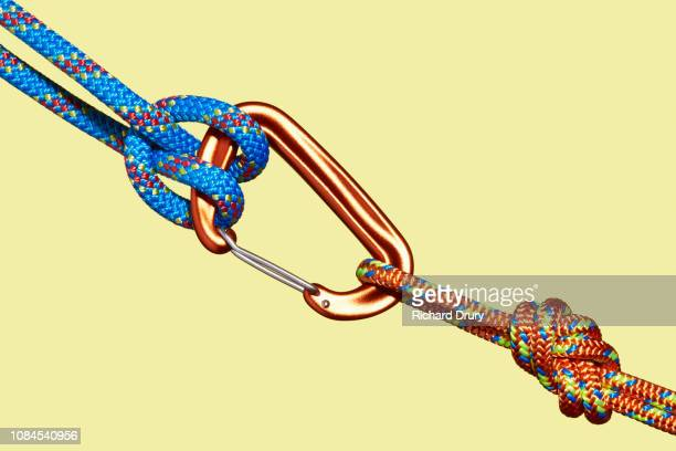 two coloured ropes tied to carabiner - petit groupe d'objets photos et images de collection