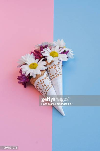 Two cones stuffed with flowers against a colorful background.