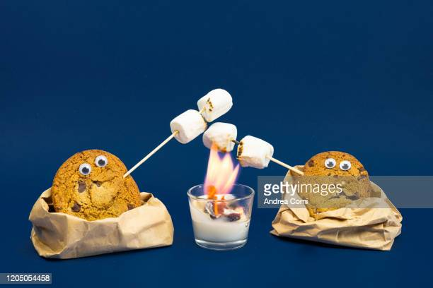 two cookies roasting marshmallows - googly eyes stock pictures, royalty-free photos & images