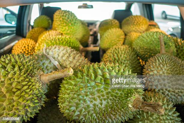 Two crates of premium breed 'Musang King' Durian
