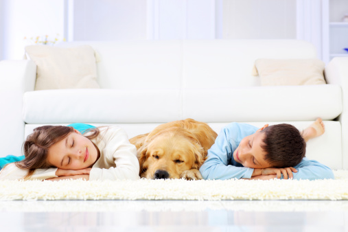 Two cute children and dog sleeping down on white carpet. - gettyimageskorea