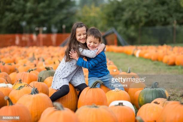 Deux mignonnes jeunes frères et sœurs squeeze chacun serré dans un champ de citrouilles.