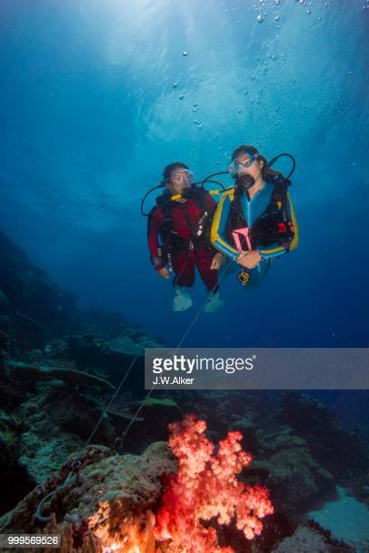 Two divers on a reef hook in open water, Palau