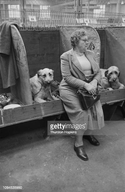 Two dogs and their owner in the stalls at Crufts dog show held at the Grand Hall Olympia London 8th9th February 1952 Original Publication Picture...