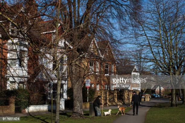 Two dogs bark at each other as they are taken for a walk by their owners on a green on February 12 2018 in Weybridge United Kingdom Surrey County...
