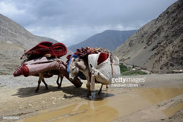 Two donkeys carry Afghan villagers's materials in the Guzirga iNur district of Baghlan province on June 8 2014Rescuers scrambled Sunday to deliver...