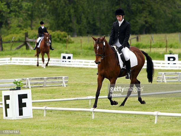 Two Dressage Rings