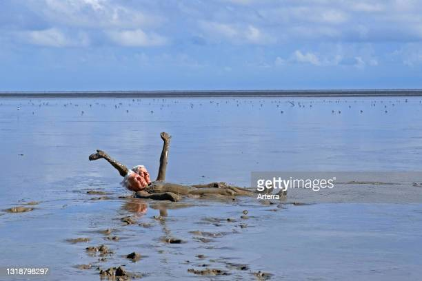 Two ederly tourists taking a mud bath on the beach in the Bigi Pan Nature Reserve in Nieuw Nickerie, Suriname / Surinam.