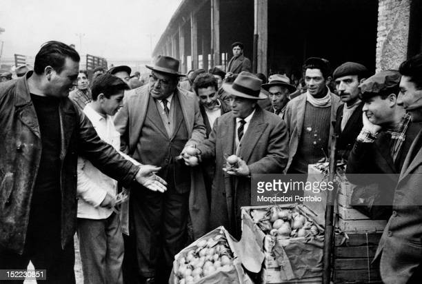 Two elegantly dressed men among the workers of the market stalls are controlling the trade of pears and oranges piled in some crates in a market of...
