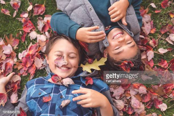 two elementary-age brothers lay in the leaves at the park - september stock pictures, royalty-free photos & images