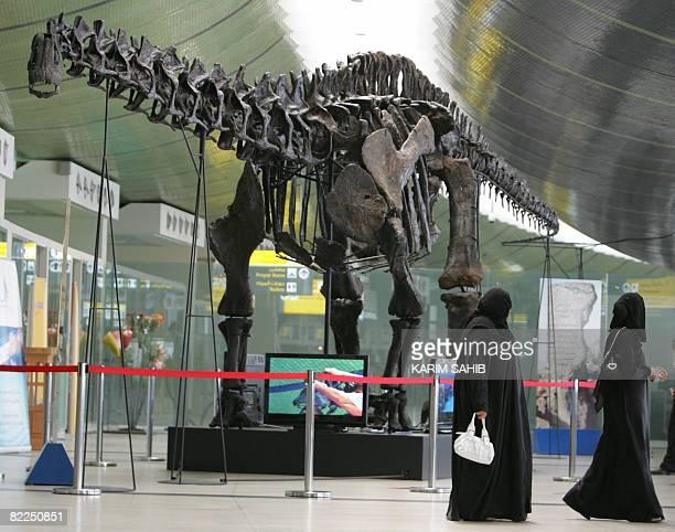 Two Emirati women walk past the 140millionyearold dinosaur put on display at Abu Dhabi international airport until October on August 11 2008 The...