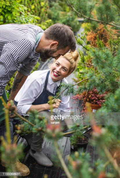 two employees working at the garden center - botanist stock pictures, royalty-free photos & images