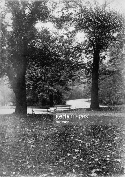 Two empty park benches face each other as autumn leaves are scattered around Prospect Park in the borough of Brooklyn, New York City, New York, 19th...