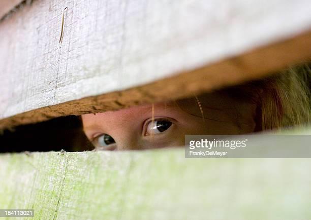 Dos ojos peeping