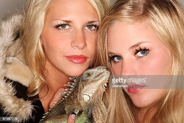 two fashion modles and one pet iguana - ugly lips stock photos and pictures