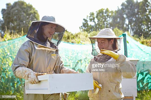 Two female beekeepers chatting on city allotment