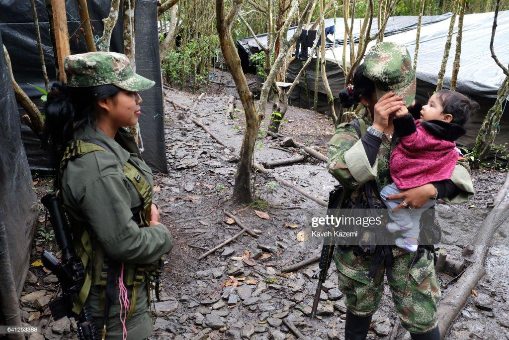 FARC's Temporary Demobilization Camp : Fotografía de noticias