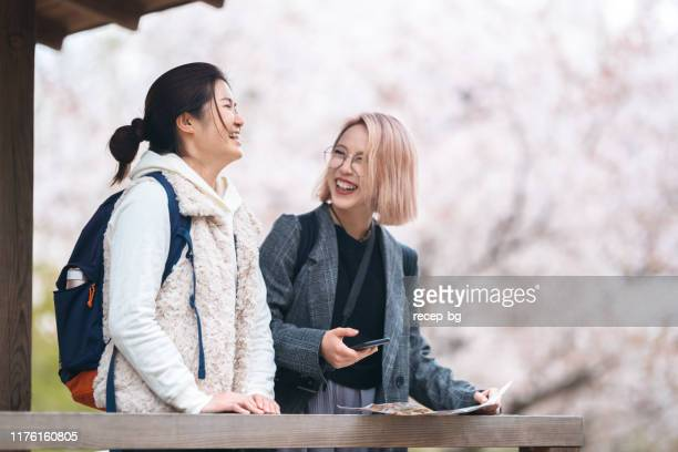 two female multi-ethnic friends using smart phone in front of cherry trees - south east asian ethnicity stock pictures, royalty-free photos & images