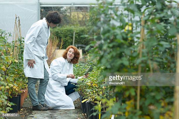 Two female scientists controlling plants in a greenhouse
