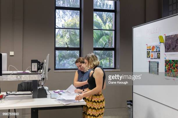 two female scientists standing in a laboratory discussing scientific papers and research results. wide angle, side view of them both standing at the desk looking down at the paperwork on the desk. - wide shot stock pictures, royalty-free photos & images